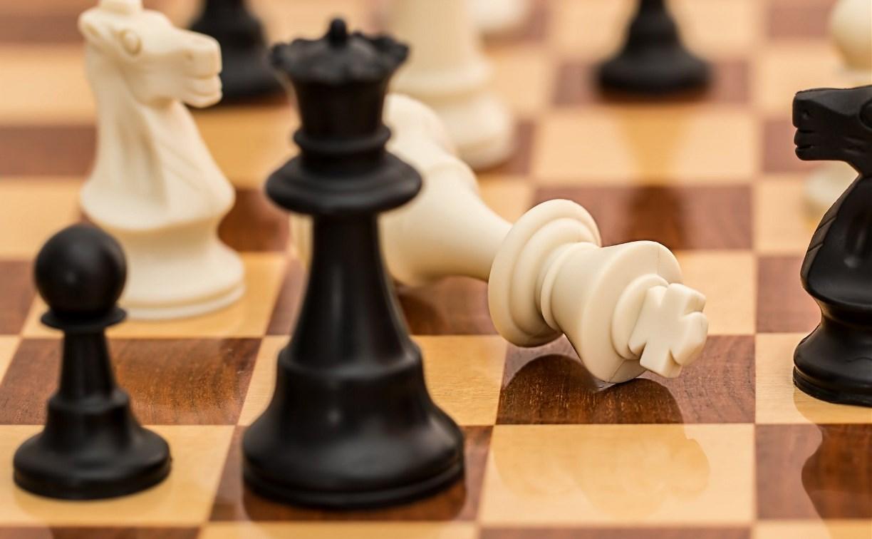 В Туле блондинки сразятся в шахматы с брюнетками