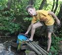 Две деревни в Киреевском районе остались без воды