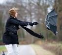 В выходные в Тульской области ожидается сильный ветер