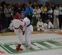 В Туле прошел межрегиональный турнир по каратэ