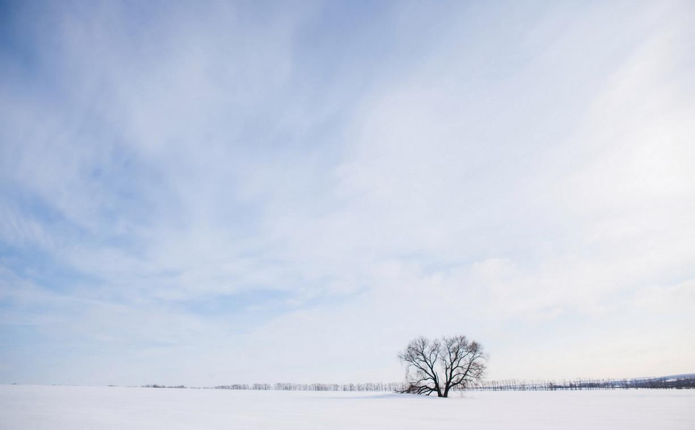 Какая погода ждет туляков 12 марта