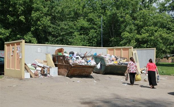 Рано утром 11 июня в Туле прошёл первый «мусорный рейд»