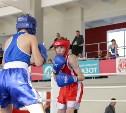 Стартовало первенство Тульской области по боксу: фоторепортаж