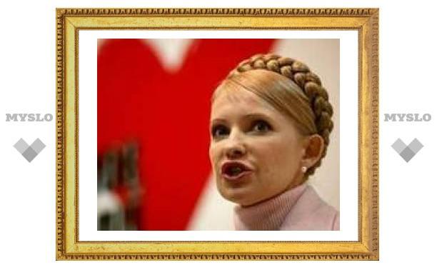 Тимошенко предлагает Западу концепцию сдерживания России