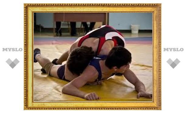 Тульские борцы вольного стиля стали серебряными призерами ЦФО