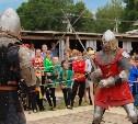 Мотоциклы, рыцари, цирк и средневековый тир: В Туле прошел народный фестиваль