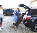 Полицейские Тульской области обеспечивают общественный порядок на «Дикой Мяте»