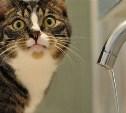 Где в Туле 3 августа не будет воды