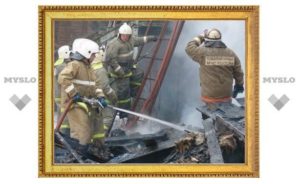 В минувшие выходные на пожарах в Тульской области погибли 6 человек