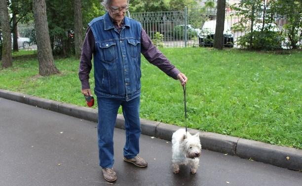 В тульских парках ловят нарушителей правил выгула собак