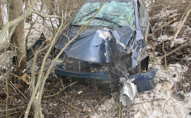 В Кимовском районе Toyota вылетела в кювет и врезалась в дерево