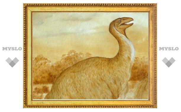 В Австралии нашли наскальную роспись с вымершими птицами