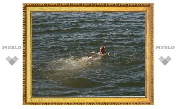 В пруду под Тулой утонул мужчина