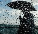 Во вторник в Тульскую область придут дожди и похолодание