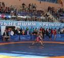 Тульские борцы привезли девять медалей с первенства спортивного общества «Юность России»