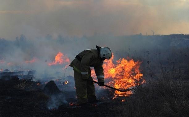 За два дня в МЧС зафиксировано более 160 поджогов травы и мусора