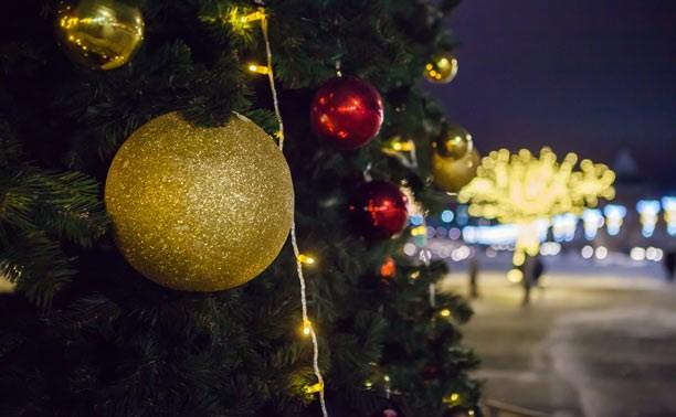 В тульских парках откроются новогодние ёлки