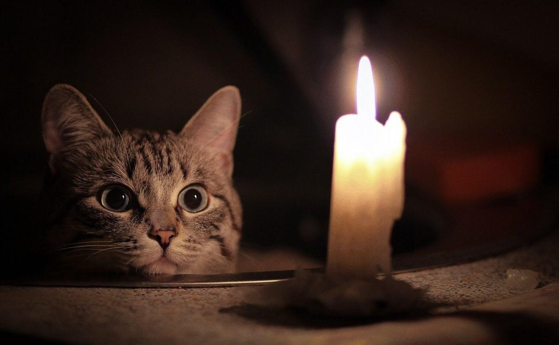 Где в Туле отключат свет 23 января?