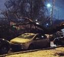 В Туле огромное дерево раздавило припаркованный Opel
