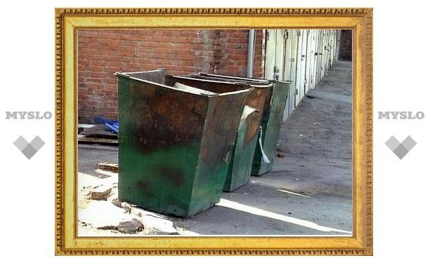 Под Тулой рецидивист украл мусорные баки