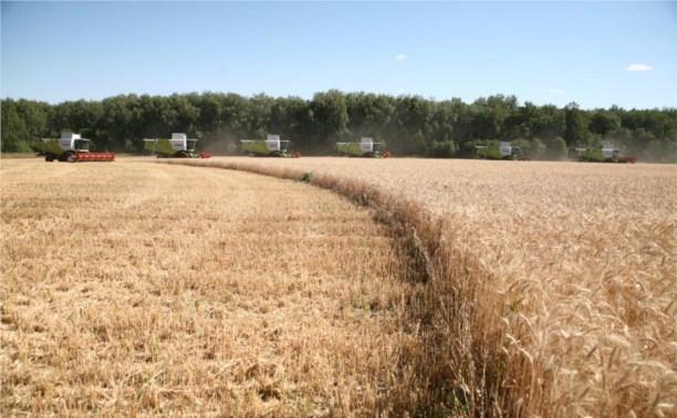 Тульская область будет поставлять сельхозпродукцию в Москву