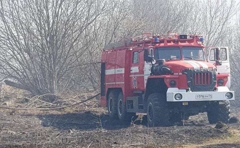 Под Тулой горят поля: пожарные спасли поселок от огня
