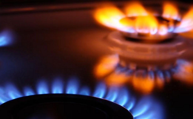В правительстве Тульской области обсудили вопросы газификации