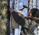 В Белоусовском парке выбрали лучший домик для птиц