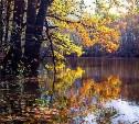 Бабье лето придёт в Тульскую область во второй половине сентября