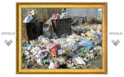 В Туле проверили санитарное состояние дворов