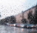 Погода в Туле 23 октября: дождь и порывистый ветер