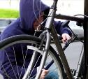В Новомосковске велосипедного вора нашли по отпечаткам пальцев