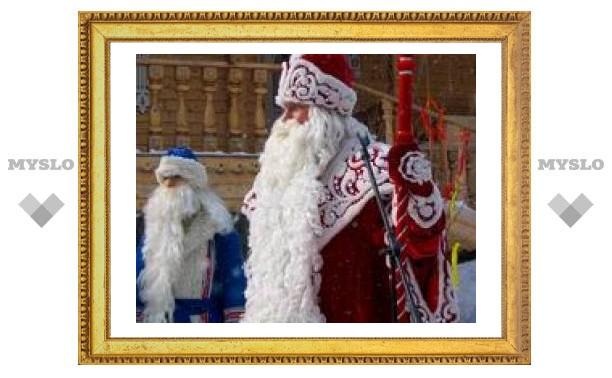 Сколько стоит Дед Мороз в Туле?