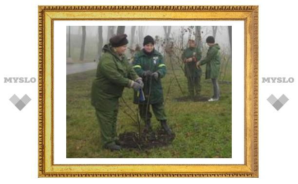 """В """"Зеленой дубраве"""" посадят новые деревья"""