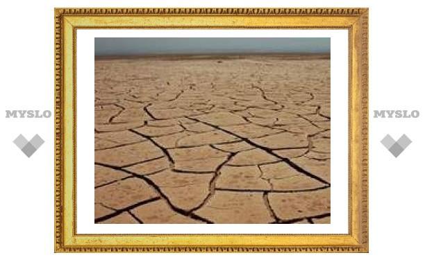 17 июня: День борьбы с засухой