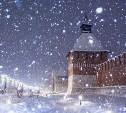 На выходных в Тульской области ожидается мощный снегопад