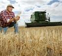 Тульским фермерам помогут деньгами