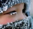 Погода в Туле 26 января: мороз и ветер