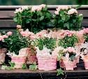 Всемирный фонд дикой природы призывает отказаться от покупки цветов 8 Марта
