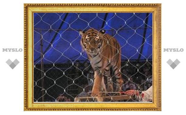 Директор цирка избежал уголовной ответственности за гибель тигров