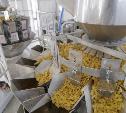 Тульская макаронная фабрика повысила производительность труда благодаря нацпроекту