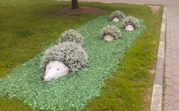 В Туле установили новую цветочную композицию «Ёжики»