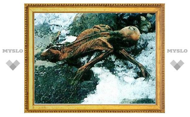 Ученые разуверились в трагической смерти ледяного человека Отци