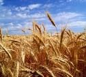 В Тульскую область будут поставлять сельскохозяйственную технику из Венгрии