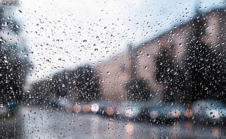 Погода в Туле 24 октября: сильный ветер, до 15 градусов тепла