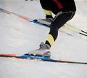 В Тульской области определены чемпионы в лыжных гонках
