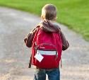 В Тульской области школьник пропал по пути от бабушки домой
