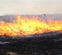 На выходных в Туле зафиксировали 61 случай поджога сухой травы