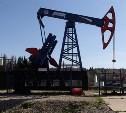 Правительство планирует провести аукцион на последнее крупнейшее месторождение нефти