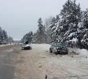 В аварии под Рязанью пострадала семья из Тульской области